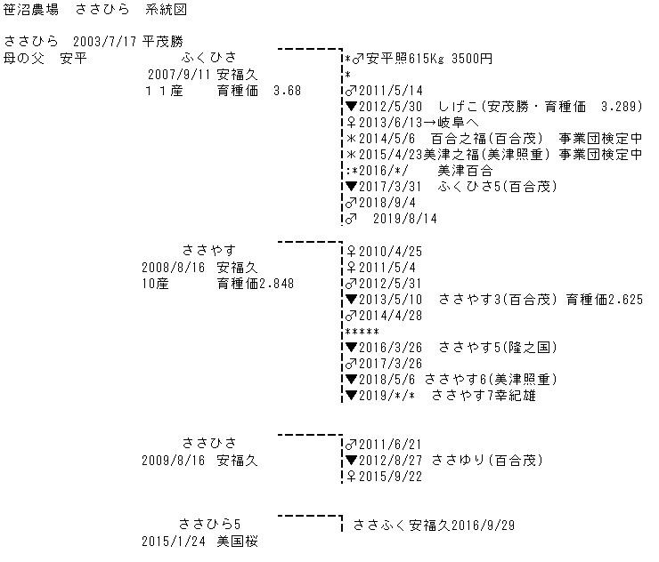 笹沼農場 ささひら 系統図
